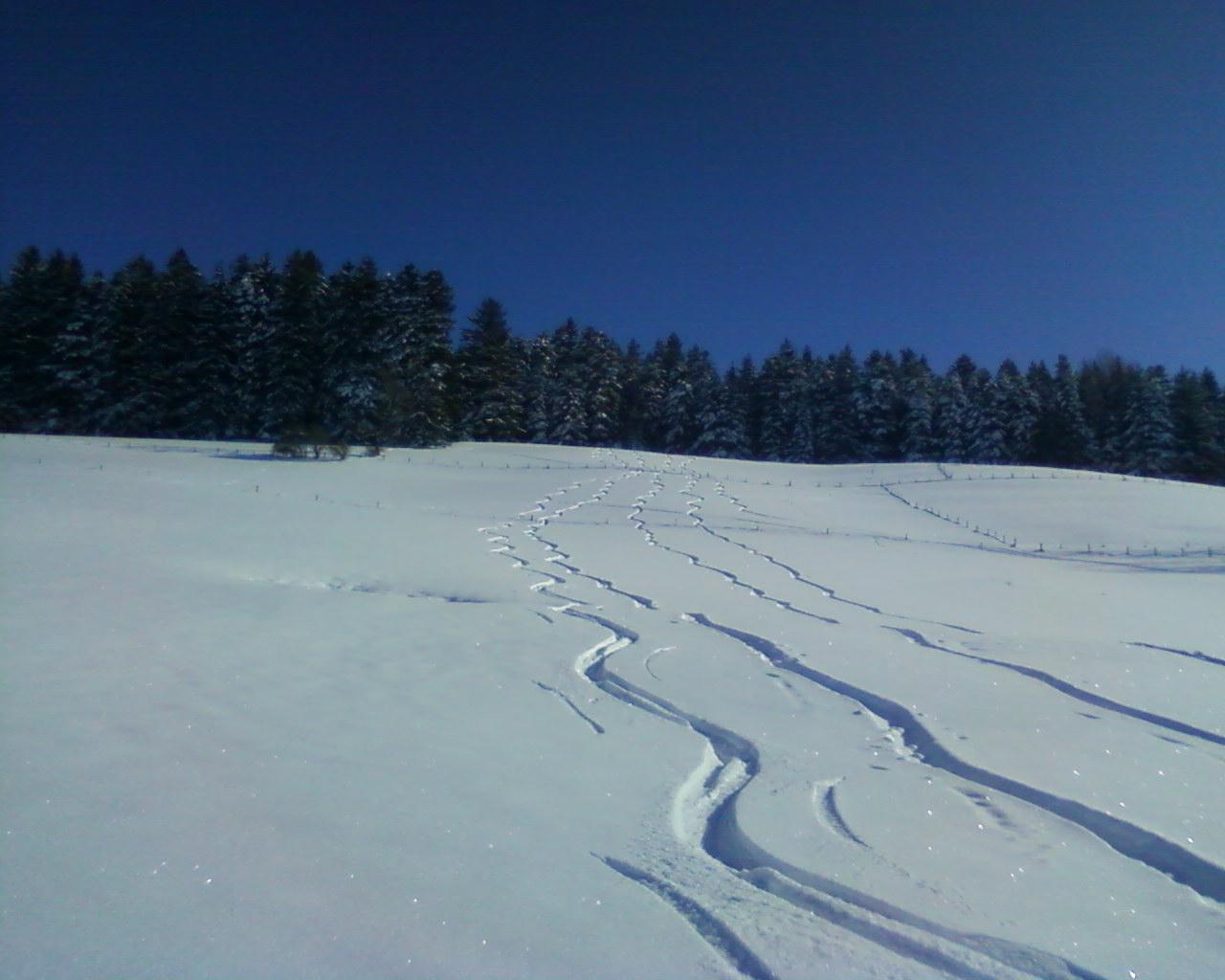 Skitour – Direkt Vom Fehrhof Aus…